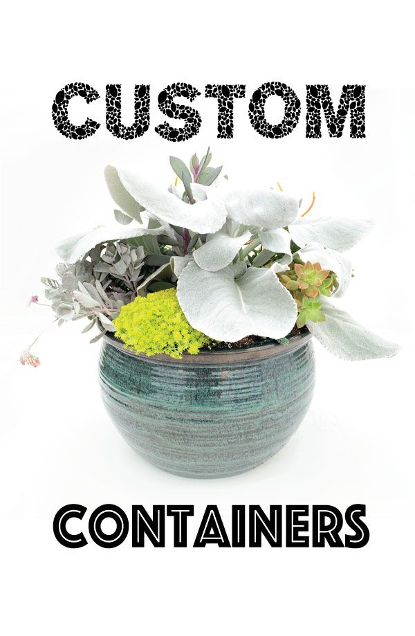 Custom Containers
