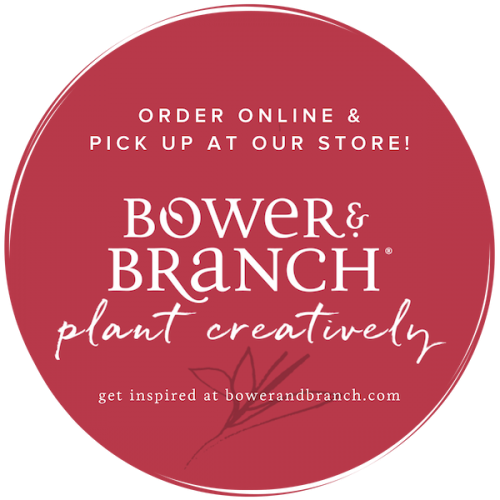 Introducing Bower & Branch!