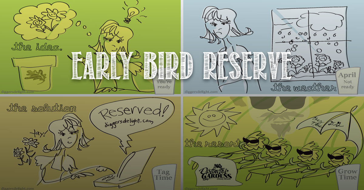 2015 Early Bird Reserve