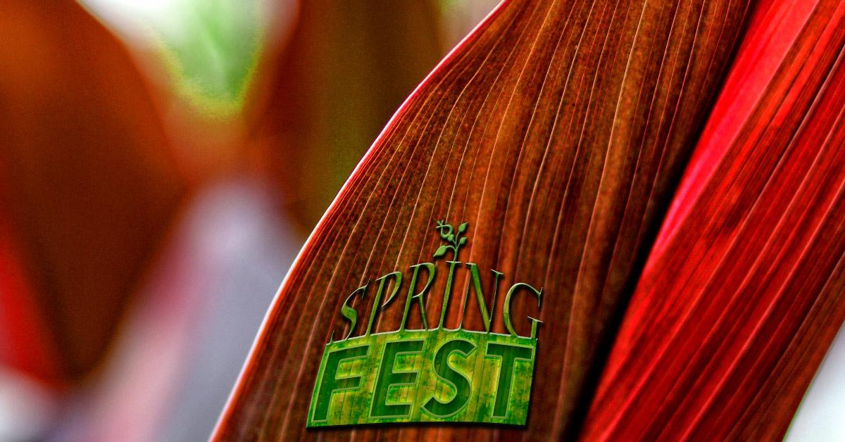 Springfest 2015