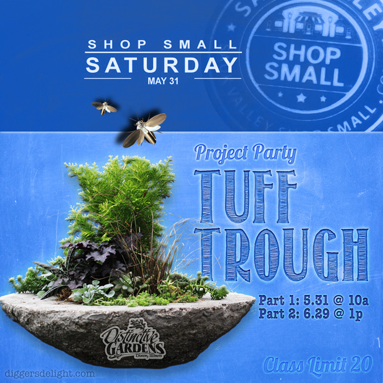 2014 Shop Small Saturday May 31