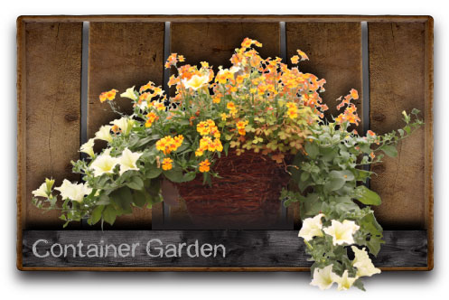 2014 Container Garden Class and New Online Store!