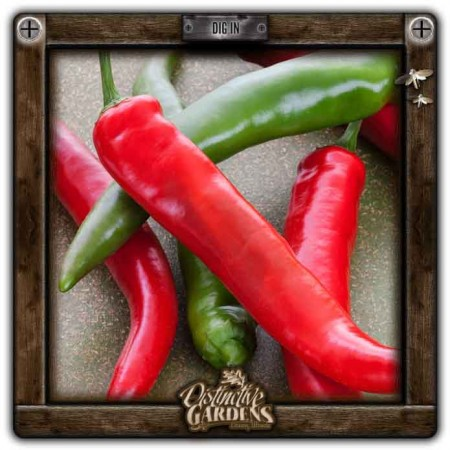 HOT PEPPER Garden Salsa 2
