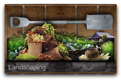2014 DIY Home Landscaping Class