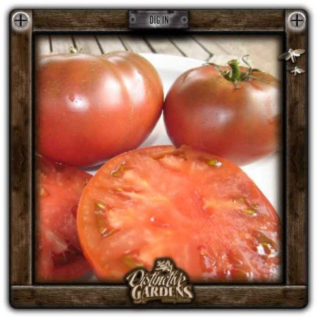 TOMATO Cherokee Purple 2